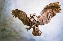 Tonight's the night (Masamune81) Tags: katsuta kyohei owl búho origami papel papiroflexia paper art bird pájaro animal
