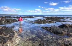 Rock Pools at West Looe, Cornwall (Baz Richardson (trying to catch up again!)) Tags: cornwall looe hannaforebeach rockshelvesrockpools coast westlooe rockpools