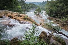 Palenque Agua Azul Falls Cascades-5