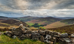 Lugala Valley. (Tony Brierton) Tags: 23417 cowicklow evening guinnesslake loughtay lugala countywicklow ireland