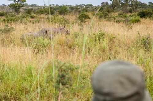 KrugerParkREIZ&HIGHRES-82