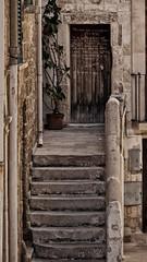 Stupore (mazzottaalessandra) Tags: scale stairs old vecchio vicolo viuzza centro storico urban contrasto canon pianta flower flowers fiori sea mare seaside edificio architettura prospettiva prospective