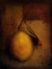 Vintage Lemon Study (jimlaskowicz) Tags: textures art painterly artistic impressionistic vintage lemon