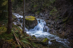 Irresistible Force Meets the Immovable Object (writing with light 2422 [not pro}) Tags: hallscreek washingtonstate waterfall rocks landscape richborder vignette moss trees sonya77 sigma1020mm