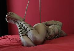 a-red 2 (shibarigarraf) Tags: shibari bondage shibarigarraf male rope bound