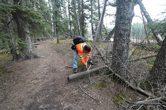 Selfie Sunday (davebloggs007) Tags: trail clearing silky 2000 saw