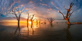 Bonney sunrise