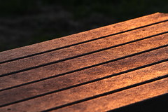 Table of low sun (Tyrone Williams) Tags: wood light sunset sun abstract colour reflection texture table wooden picnic lowsun laquer picnicbench