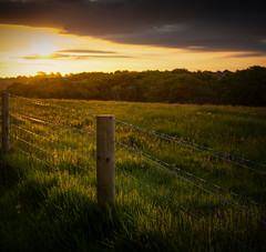 Morning Light across the other side of the fence.... (Ian Johnston LRPS) Tags: morning trees light grass clouds sunrise fence wire nikon shadows posts d800 2013