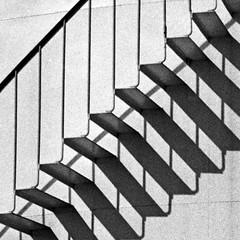 2013_006_14_crop (xler42) Tags: mamiya rodinal rz67 fomapan100 75mmshift