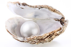 Mar (samarastefane) Tags: sea white marine shell pearl oyster elegant bingo jewels luxury abundance rare isolated gem nacre opened