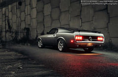 69' Ford Mustang 'IV' (Mitch Hemming) Tags: ford 1969 mitch mustang v8 musclecar fastback hemming mhemming