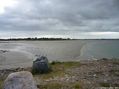 P1040080_a-001 (O Suave Gigante) Tags: ireland blackwater wexford curracloe ballinesker ballinaclash ballyconnigar ravennaturereserve ravennaturereservewexford ballynaclash