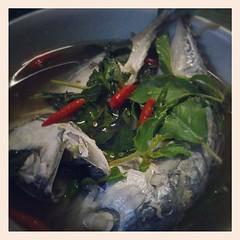 เมนูวันนี้: ต้มยำปลาทูน้ำใส ^^