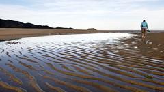 Abel Tasman NP-Marahau Beach (scrumpy 10) Tags: newzealand nature landscape nikon natur aotearoa mothernature neuseeland landschaften d800 jacqualine ozeanien newzealandnature abeltasmannp marahaubeach scrumpy10