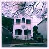 lewisham (AS500) Tags: house west architecture sydney lewisham inner