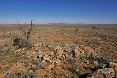 boolcoomatta july 2013 - 7240563 - gnamma holes (liam.jon_d) Tags: australian australia well outback sa southaustralia cistern bha southaustralian billdoyle nativewell bushheritageaustralia gnammahole gnammaholes gnamma abhf boolcoomatta bushheritage australianbushheritage australianbushheritagefund boolcoomattareserve thegnammaholes
