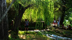 giochi di luce sulle rive del fiume (lele orpo) Tags: river sardinia gh1 cedrino neulè ecoparco