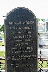 Adler center stone
