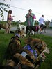 grapehounds07087