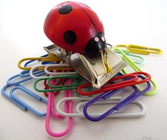 Ladybird & paperclips (Pat's_photos) Tags: red clip ladybird paperclips 365d 913sh12