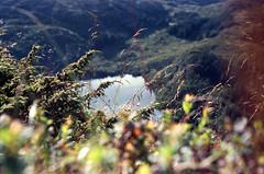 21 Bergen (M. SCHULZ) Tags: exa 1b canon 9000f kodak farbwelt 400 analog norwegen 35mm ulriken bergen film norway norge ihagee iso analogue