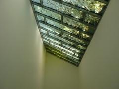 shades of light (Jrg Paul Kaspari) Tags: autumn light nature laub herbst natur inselhombroich erft museuminselhombroich 2013 lichteinfall lichtfall shadesoflight tagesfahrt erftaue kunstnaturundlandschaft