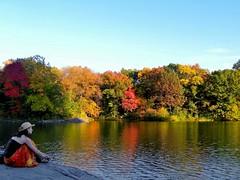 Central Park Contemplation (Eddie C3) Tags: newyorkcity autumn centralpark lakes fallfoliage autumncolor nycparks nikoncoolpixp90