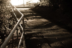 (Justin Etzel) Tags: sunset lens golden bokeh pavement sidewalk hour flare railing