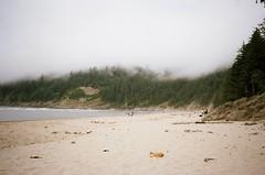 72510022 (sammywoolf) Tags: oregon coast punchbowl shortsands