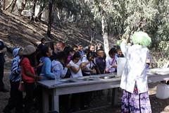 "Eco Tour - Miles Magnet • <a style=""font-size:0.8em;"" href=""http://www.flickr.com/photos/27406935@N05/10950523805/"" target=""_blank"">View on Flickr</a>"