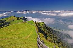 Rigi summit, high above the clouds (Jasper180969) Tags: switzerland summit lakelucerne rigi