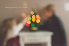 IMG_1766 (Betsy Morgan Photography) Tags: christmas toddler advent naturallight christmastree matte christmascountdown 25daysofchristmas