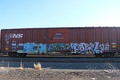 Sicker, Leder, Fowl (NJphotograffer) Tags: railroad art car train graffiti box rail moms fowl graff freight leder trackside sicker
