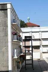St Roch ladder