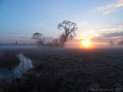 Frostiger Morgen in der Schwalm (Oliver Deisenroth) Tags: morning sky nature beautiful fog sunrise scenery stream nebel natur himmel sonnenaufgang morgen olympusstylus1