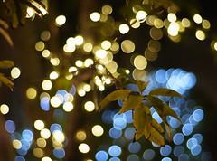 illumination (Ainamy) Tags: sky tree japan tokyo asakusa