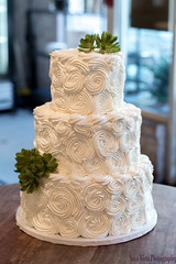 Shabby Chic Roses with Succulents (Tiered Wedding Cake) (novavistaphotography) Tags: flowers food cake 50mm succulent weddingcake fakeflowers succulents fauxflowers nikond3200 decoratedcake tieredcake fakecake tieredweddingcake displaycake cakephotography