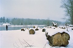 Peaceful Snowlandia (Mic_Jay) Tags: park wood snow film oregon forest 35mm canon river portland landscape person gold log pacific northwest flood kodak snowstorm logs peaceful calm pnw willamette oregoncity rebel2000 kodak200