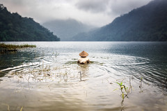 Morning bath (Asian Hideaways Photography) Tags: water river travel travelphotography vietnam fisherman people asia southeastasia fisher fishing landscape vietnamese nature naturallight lake mountain