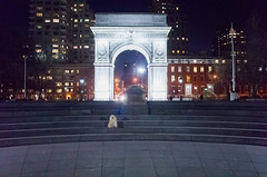 washington square park fountain (Charley Lhasa) Tags: ricohgrii grii 183mm 28mm35mmequivalent iso5000 ¹⁄₈₀secatf28 0ev aperturepriority pattern noflash r012486 dng uncropped taken170205192628 uploaded170215000921 3stars flagged adobelightroomcc20158 lightroomcc20158 adobelightroom lightroom charley charleylhasa lhasaapso dog night evening washingtonsquarearch arch washingtonsquarefountain washingtonsquarepark wsp nycparks citypark urbanpark greenwichvillage manhattan newyorkcity nyc newyork ny tumblr170214 myfavorites moo moocd buscd httpstmblrcozpjiby2itg4a0