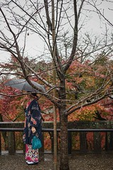 Raining (Syahrel Azha Hashim) Tags: autumnseason autumn sony clearsky fall holiday simple kyoto details a7ii umbrella kimono ilce7m2 dof traveldestination japanese shrine unesco season shallow oneperson handheld 35mm colorimage vacation sonya7 prime light fallseason naturallight traditionalclothing colorful beautiful tree travel syahrel getaway 2016 colors branches kiyomizuderatemple raining japan detail