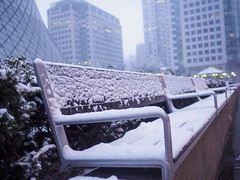 Brrrrr....its really cold..! (ravi_pardesi) Tags: bench canada cold coldweather downtown empty metro ontario seat seatingarea snow snowy street toronto urban urbanscape winters covered urbanandstreet cityscapes evening dusk storm northamerica eastcoast