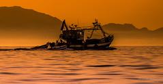 La pêche côtière. Maroc (Bouhsina Photography) Tags: pêche côte marinasmir mer plage maroc tétouan tetuan bateau eau coucher soleil sunset bouhsina bouhsinaphotography canon 7dii ef70200