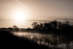 Norfolk Morn (John P Norton) Tags: misty norfolk reeds river silhouette trees copyright2017 f13 fujifilmxt1 11500sec xf18135mmf3556rlmoiswr focallength309mm aperturepriority