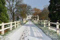 Winter... [Mons, Belgium - 2017]