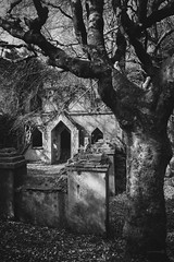 Talysarn Hall Chapel (ShrubMonkey (Julian Heritage)) Tags: chapel talysarn hall dorothea quarry nantlle house slate disused derelict abandoned forgotten ruin ruined eerie landscape wales building secluded isolation mountains snowdonia sonyalpha mono bw gnarly tree