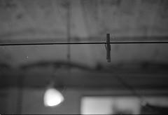 Tonight... (polykrom_) Tags: clothespeg washingline bw bnw blackandwhite noiretblanc analog nofilter filmisnotdead nikonfe2 nikon ilfordhp5 50mm