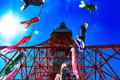Tokyo Tower and Carp Streamers : 東京タワーと鯉のぼり (Dakiny) Tags: 2017 spring april japan tokyo minato minatoward park garden shibapark city street outdoor architecture japanesearchitecture tower blue sky nikon d7000 sigma 1770mm f284 dc os hsm sigma1770mmf284dcmacrooshsm nikonclubit
