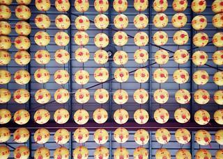 67/365 Chinese lanterns
